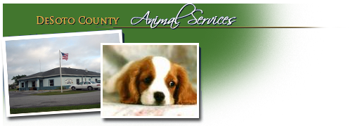 DeSoto County Animal Services Division Header