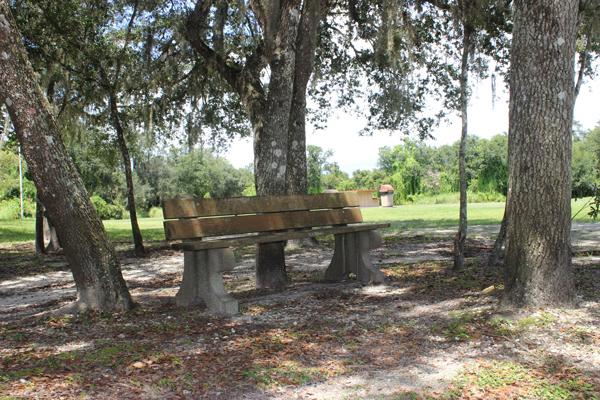 Morgan Park Bench