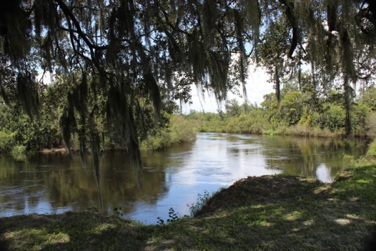 Morgan Park River